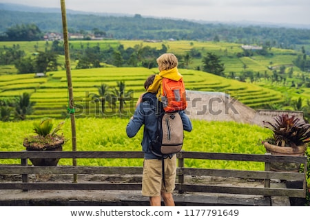 Dad and son travelers on Beautiful Rice Terraces against the background of famous volcanoes in Bali, Stock photo © galitskaya