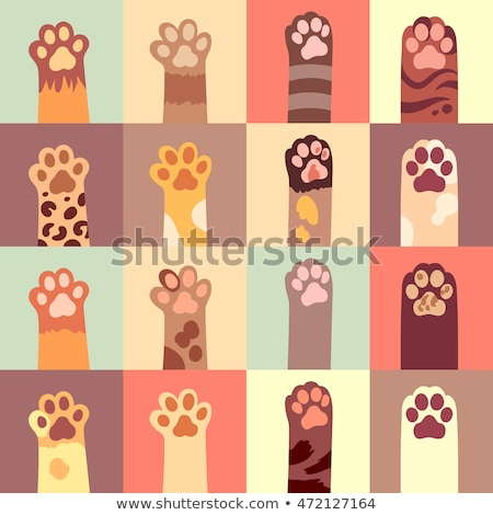 Cat paws collection - flat design style illustration Stock photo © Decorwithme