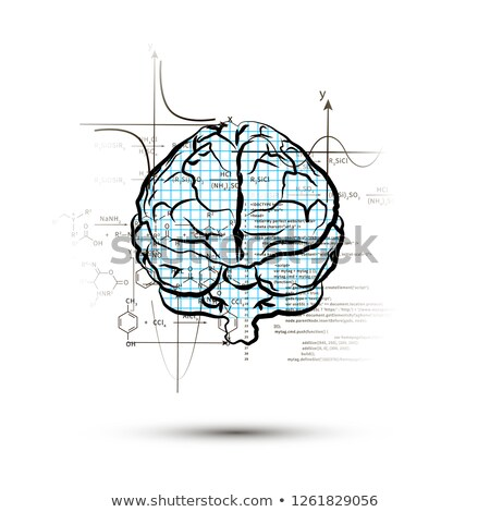 Technical hemisphere of human brain in front view, right side of brain functions concept isolated on Stock photo © evgeny89