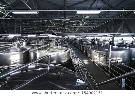 wine industry process Stock photo © photography33