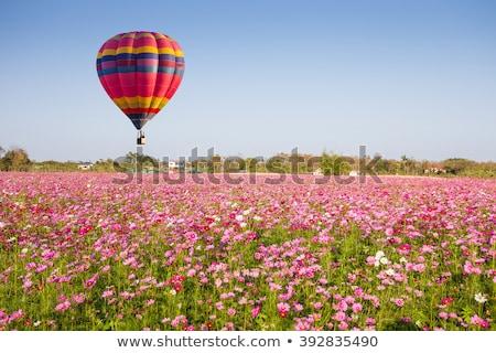 balão · de · ar · quente · blue · sky · vetor · ícone · nuvens · céu - foto stock © wad