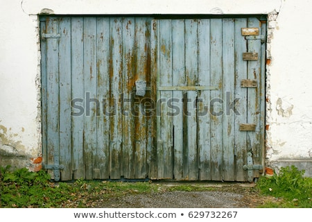 гнилой древесины серый природы фото Сток-фото © pzaxe
