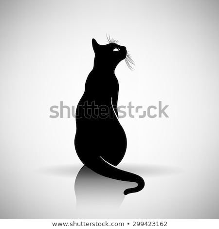 undomesticated cat stock photo © elwynn