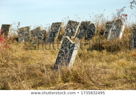 Eski mezarlık bölüm eski çim çapraz Stok fotoğraf © ralanscott