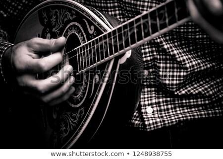 греческий музыкальный инструмент серый цветы древесины солнце Сток-фото © szsz