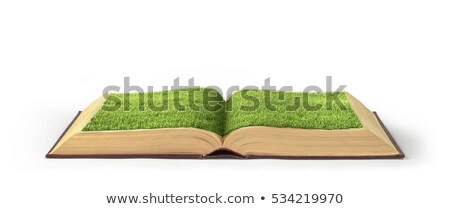 Paper sheet with green grass isolated on white background Stock photo © smeagorl