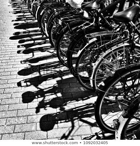 Велосипеды Тени тротуар низкий вечер солнце Сток-фото © eldadcarin