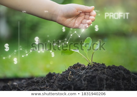 earnings concept stock photo © tashatuvango