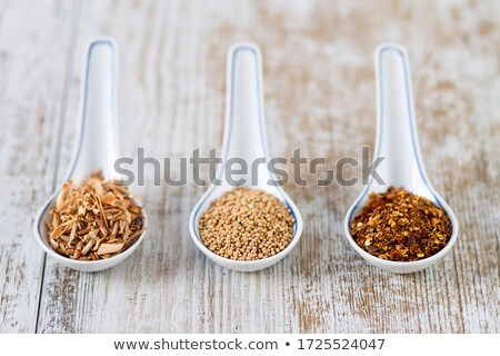 various spices in porcelain spoons stock photo © zerbor