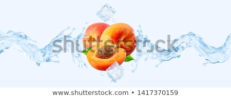 ice cube and peach isolated stock photo © givaga