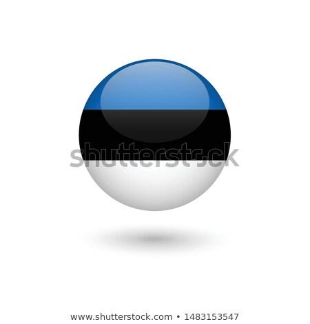 Voetbal vlag Estland groen gras voetbal veld Stockfoto © MikhailMishchenko