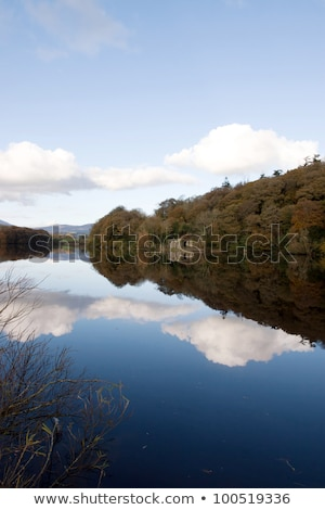 Stock photo: boat house beside the river blackwater