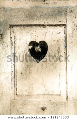 old wooden door in meran, Tirol, Italy with a carved romantic he Stock photo © meinzahn