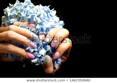 manicured fingernails in front of purple flowers stock photo © andreypopov