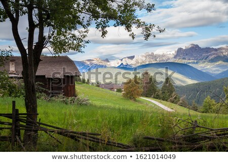 view over the meadows and agriculture in the dolomite alpes, near village Vigo Stock photo © meinzahn