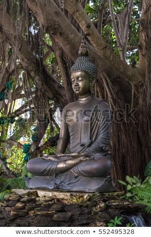 Vergadering bronzen buddha afbeelding standbeeld Stockfoto © nalinratphi