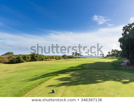 Golf tee marker on fairway overlooking ocean in Lihue Kauai Stock photo © backyardproductions