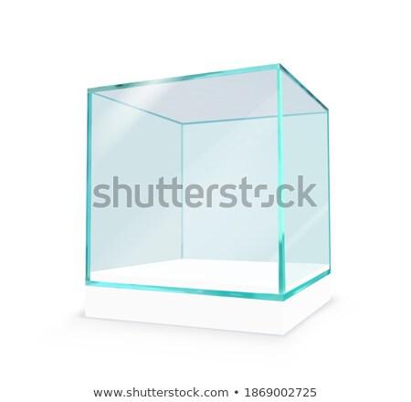 стекла · объект · 3D · аннотация · яблоко - Сток-фото © cherezoff