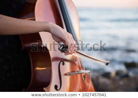 Beautiful cello player and her instrument Stock photo © sumners