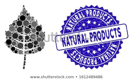 Abedul hoja vector icono estilo icónico Foto stock © ahasoft