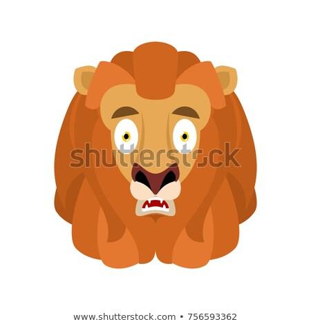 Lion scared OMG. Wild animal Oh my God emoji. Frightened beast.  Stock photo © popaukropa