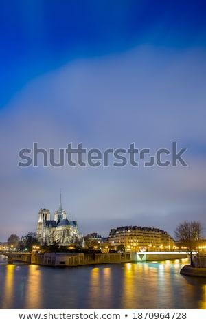 Nehir gece yarısı şehir Paris su sokak Stok fotoğraf © Givaga