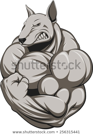 Mascotte chien muscles flex illustration musculaire Photo stock © lenm