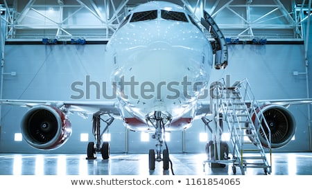 Air hostess beside private jet. Stock photo © IS2