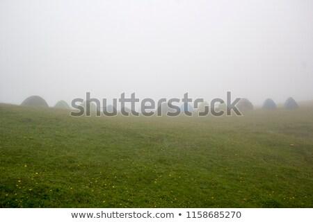 Turista sátor hegy fennsík nyár túrázik Stock fotó © Kotenko