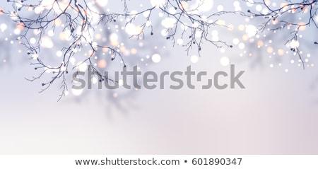 sneeuwvlok · Blauw · exemplaar · ruimte · tekst · abstract · natuur - stockfoto © milsiart