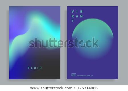 Vibrante ondulado fluido banner resumen Foto stock © SArts