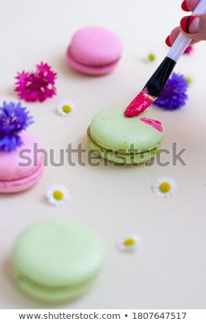 Pinsel Wildblumen Kamille violett Kopie Raum Malerei Stock foto © artjazz