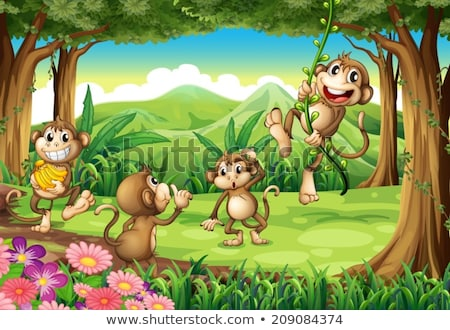 Four scenes with monkey in forest Stock photo © colematt