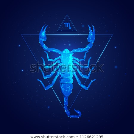Escorpião zodíaco assinar projeto animal gráfico Foto stock © Krisdog