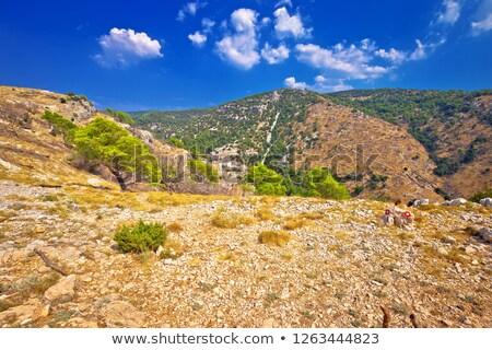 eiland · steen · woestijn · vallei · regio · Kroatië - stockfoto © xbrchx