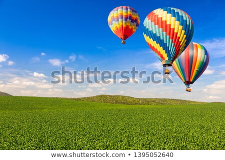 hot air balloons over lush green landscape and blue sky stock photo © feverpitch