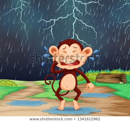 Majom esik az eső jelenet illusztráció természet háttér Stock fotó © colematt