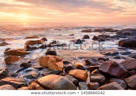 юг побережье мирный волны туманный Сток-фото © lovleah