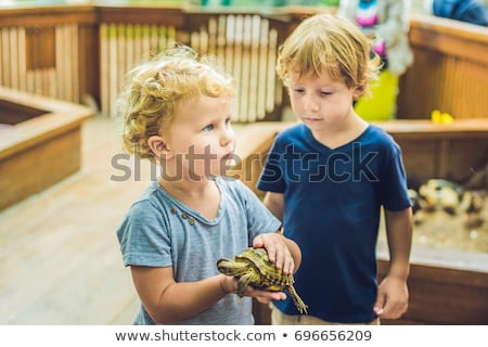 toddler girl caresses and playing with turtle in the petting zoo. concept of sustainability, love of Stock photo © galitskaya