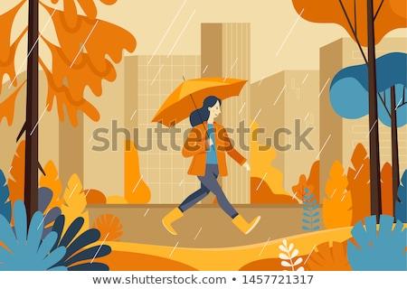 Deszczowy pogoda jesienią parku parasol wektora Zdjęcia stock © robuart