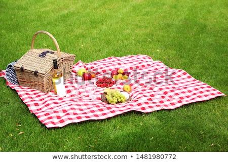 piknik · battaniye · sepet · çim · dramatik · tan · gökyüzü - stok fotoğraf © jsnover