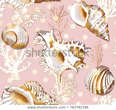 Seamless pattern with seashells. Vector illustration Stock photo © natali_brill