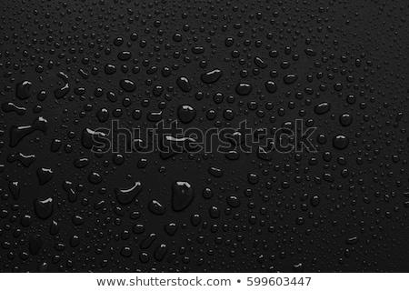 fleswater · zwarte · water · fles · leven · schone - stockfoto © Raduntsev