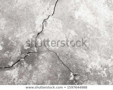 Crack in plastered wall Stock photo © IngaNielsen