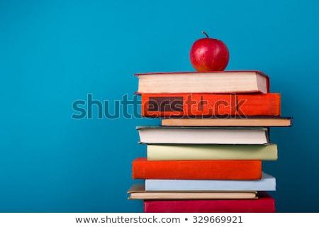 Mavi okul ders kitabı defter beyaz Stok fotoğraf © devon
