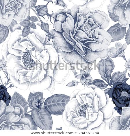 gyönyörű · végtelenített · vektor · virág · terv · levél - stock fotó © isveta