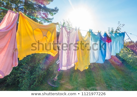 Washed clothes drying outside Stock photo © artush