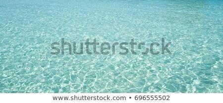 加勒比的 透明 波紋 海灘 綠松石 水 商業照片 © lunamarina