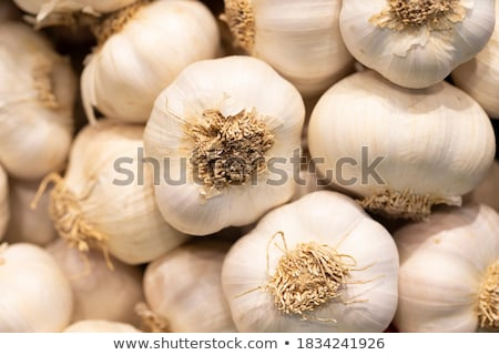 Garlic close up stock photo © zhekos