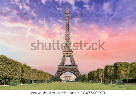 Night view of Champ de Mars, Paris - France Stock photo © fazon1